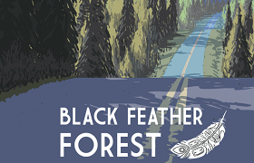 Black Feather Forest. news banner